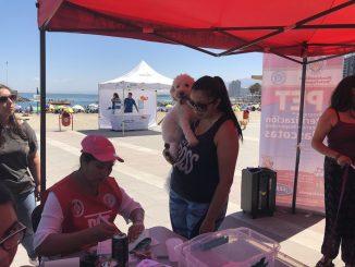 Exitosa jornada de vacunación antirrábica en Antofagasta