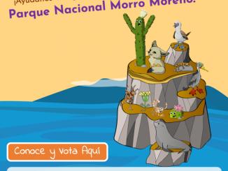 UCN y Conaf lanzan concurso online para buscar especie emblema del Parque Nacional Morro Moreno