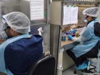 U. de Antofagasta destaca rol de estudiantes de postgrado en Laboratorio de Virología Molecular