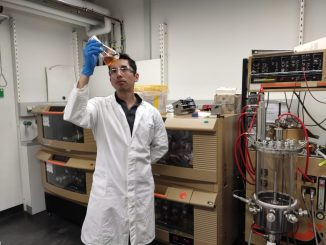 En Alemania estudian bacterias aisladas desde el Desierto de Atacama