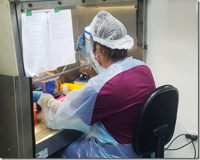 lab virologia 2304 01