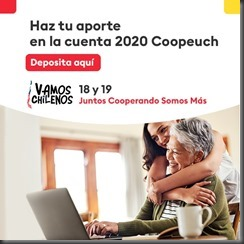 Campaña Vamos Chilenos