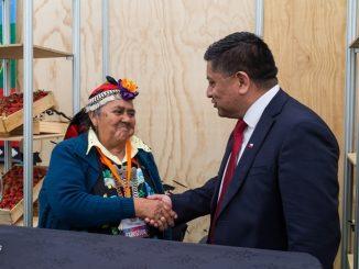 """Encargado Programa Chile Indígena de CONADI y participación de la Mujer Indígena: """"Valoramos la inclusión de las mujeres indígenas en las organizaciones y el desarrollo de los territorios"""""""