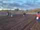 Terrazas y eras de cultivo: Sistemas agrícolas ancestrales para la sostenibilidad