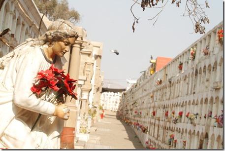 Cementerio1 (2)