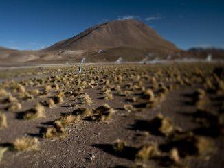Definen seis ejes clave para instaurar el primer Laboratorio Natural para la Agricultura en el Desierto