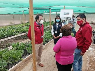 La cooperativa agrícola Coopahidralpo inaugura sala de Cuarta Gama en Antofagasta