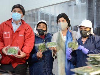 Ministros del Trabajo y de Agricultura llaman a empresas a postular al Subsidio al Empleo