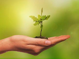 El agro apuesta por una metodología de anticipación de futuro para enfrentar los desafíos del mañana
