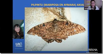 Captura de Pantalla 2020-12-30 a la(s) 17.52.17