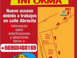 Municipio ofició a Serviu por interrumpir acceso de vecinos a Programa de Esterilización de Mascotas (PET)