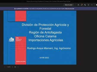 """SAG expone sobre """"Aspectos Fitosanitarios y Zoosanitarios en Controles Fronterizos"""" a jóvenes estudiantes de Calama"""
