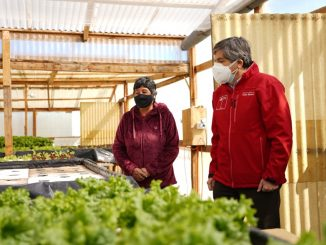 Mayores oportunidades para agricultores loínos se abren con apertura de nuevo SAT INDAP en Calama