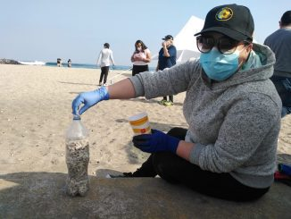 Circulo de Seguridad y Protección Bahía Antofagasta realiza operativo de limpieza en Playa Paraíso