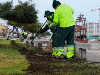 Municipalidad comenzó plan de fortalecimiento de áreas verdes