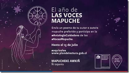 Voces Mapuche