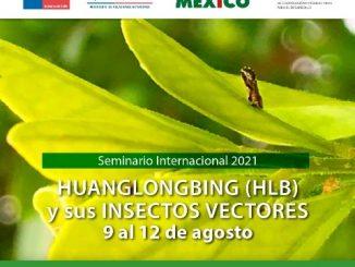 Inscríbete en el seminario internacional sobre HLB y sus insectos vectores