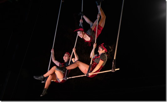 Dia Circo2019_B