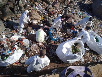 Comunidad Logística de Puerto Antofagasta participa en limpieza del borde costero para la recuperación de espacios públicos de la ciudad